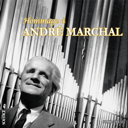 homage-to-andre-marchal